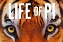 life of pi poster artwork